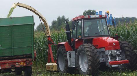Maïshakselen Schlüter Eurotrac Krone Historischer Feldtag 2016 Treckercl...