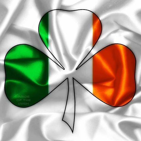 Here Come the Irish. HCTI is the Page for FANS of the Fighting Irish!