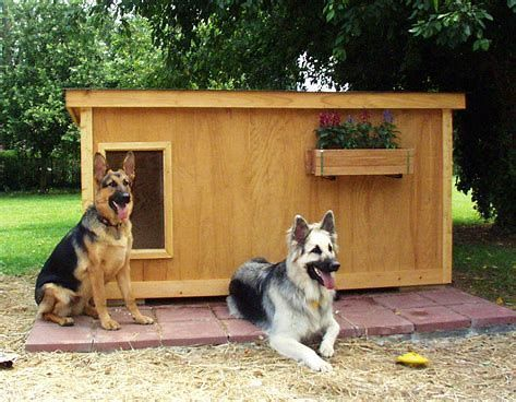 How To Build Dog House Plan No Person On Earth Will Love You