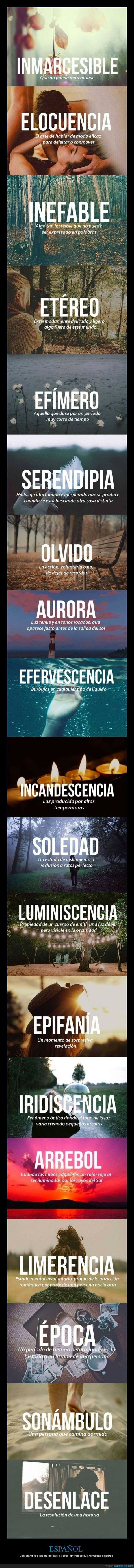 106 best education images on pinterest studying learn spanish and
