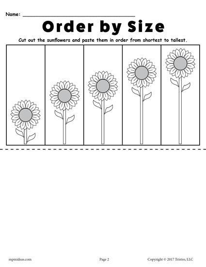 Printable Sunflower Ordering Worksheets Shortest To Tallest Tallest To Shortest Kindergarten Worksheets Free Printables Worksheets Pre K Worksheets Free printable size worksheets for