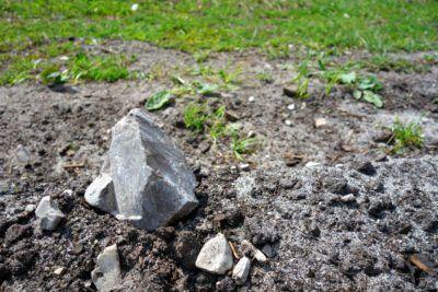 Rocks In The Garden How To Work With Rocky Soil Backyard Garden