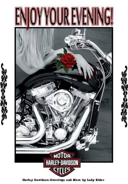Pin By Chuck Patti On Hd Lady Riders Creation Motor Harley