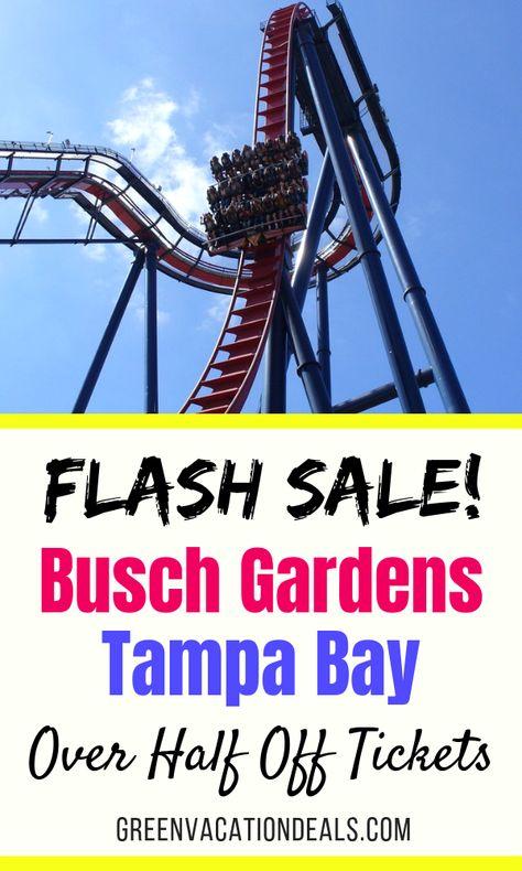 Busch Gardens Tampa Flash Sale Over Half Off Tickets Busch