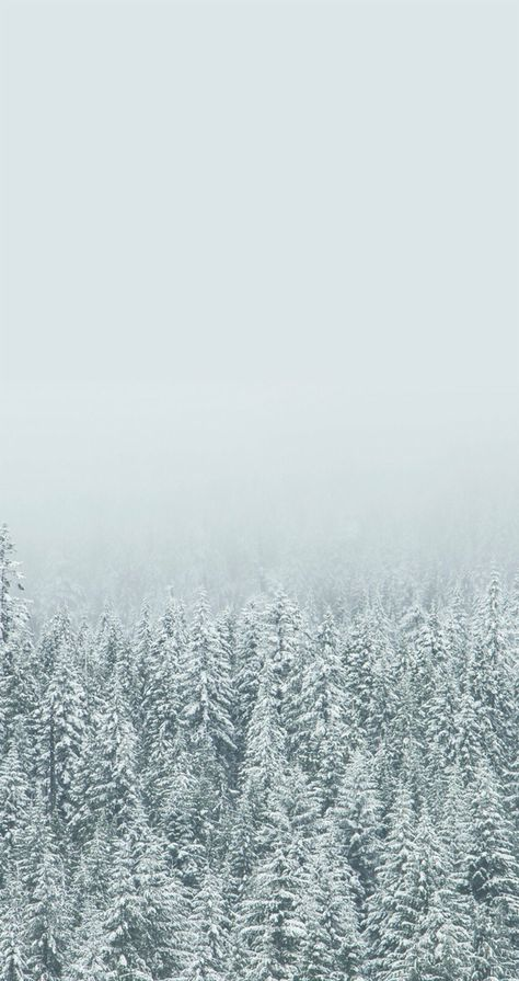 Winter Iphone Wallpaper In 2019 Winter Wallpaper Iphone