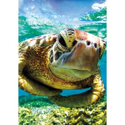 Buffalo Games Earthpix Turtle Swimmer 500pc Jigsaw Puzzle World Turtle Day Turtle Animals