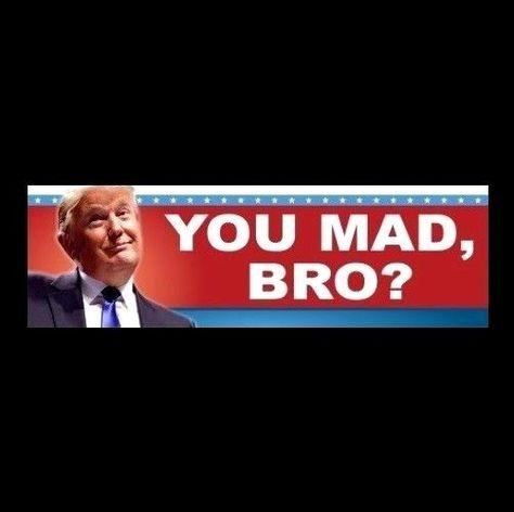"""/""""SUPER DELEGATES VS ELECTORAL COLLEGE/"""" Anti Hillary Democrat STICKER decal"""