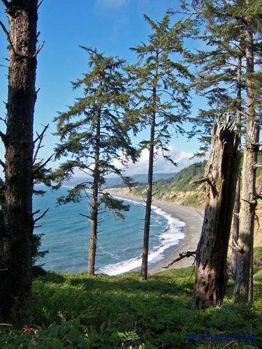 Agate Beach Humboldt Mendocinocamping