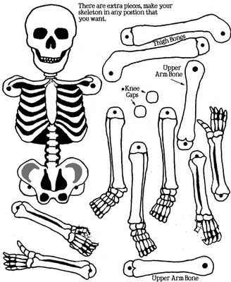 """""""Printables"""" Skeleton - Use split pin fasteners (otherwise known as brads) and your skeleton will be able to move and dance). Click & print or drag it to your word document and print"""
