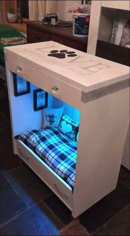 Insects Ideas Pet Room Ideas Flores De Pet Pet Clothes Pet Love Cortina De Garrafa Pet Teachers Pet Teacher S Pet In 2020 Diy Dog Bed Puppy Room Dog House Diy
