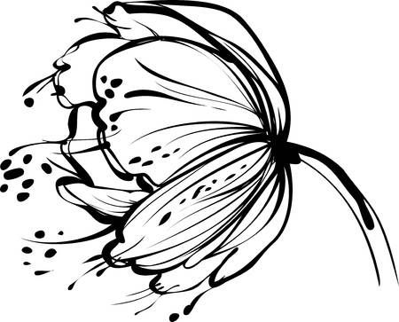Illustration Of A Image Of Nature White Flower Bud Vector Art Clipart And Stock Vectors Image 10681103 Flower Sketches Art Dandelion Drawing
