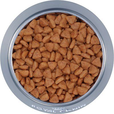 Royal Canin Veterinary Diet Hydrolyzed Protein Hp Dry Cat Food Chewy Free Shipping Food Sensitivities Food Dry Cat Food
