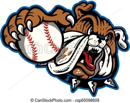 Bulldog Baseball Mascot Vector Stock Illustration Royalty Free Illustrations Stock Clip Art Icon Stock Clipart Icons Baseball Mascots Bulldog Team Mascots