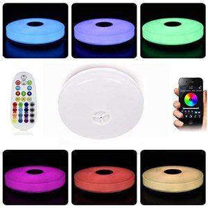 Horevo Ledシーリングライト付きリモコン Ip65防水 調光カラー 24w