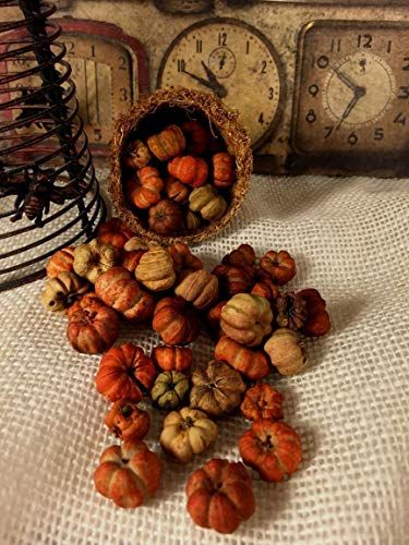 Five Full Cups Orange Natural Tiny Mini Pumpkin Putka Pods Miniscape Potpourri Bowl Filler Halloween Potpourri Decoration Neutral Fall Decor Mini Pumpkins