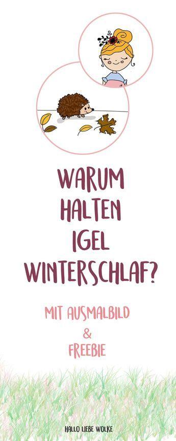 Igel Isi Und Der Winterschlaf Lerngeschichte Printable Kindergartenthemen Igel Geschichten Fur Kinder