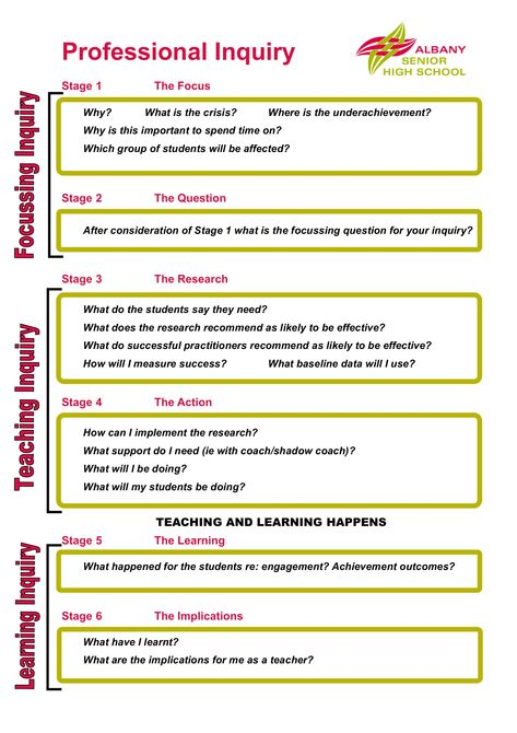 Professional inquiry - review and adapt