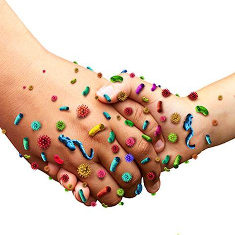enfermedades causadas por bacterias y su tratamiento
