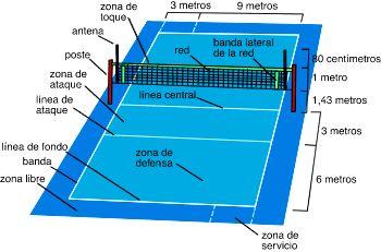 Educacion Fisica Y Deportes Medidas De Un Campo De Voleibol Campo De Voleibol Cancha De Voley Voleibol