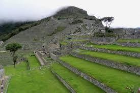 Terrazas De Cultivo Machu Picchu Busqueda De Google In 2020 Golf Courses Field Golf