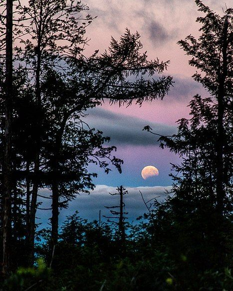 fullmoon When we go to the Tatras the...
