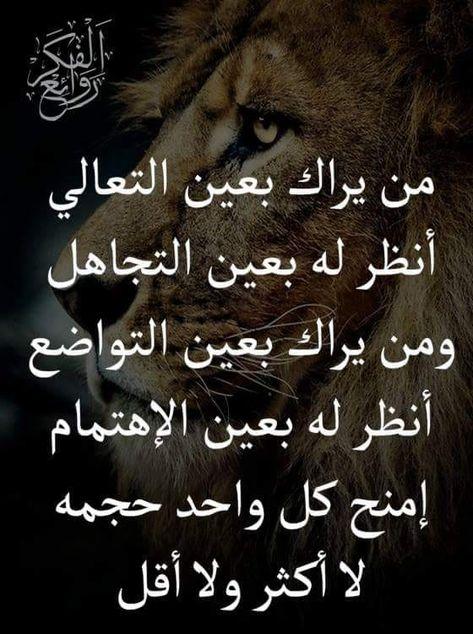 Pin By فلسطينية ولي الفخر On روائع الحكم Arabic Calligraphy Calligraphy Movie Posters