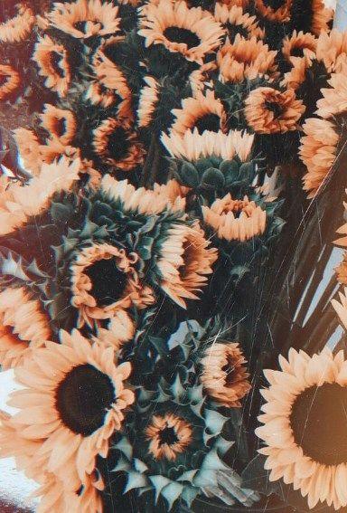 Wallpaper Flowers Vintage Flower Iphone Wallpaper Iphone