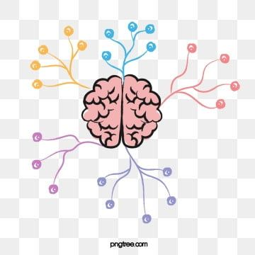 Cartoon Brain Thinking Divergent Color Brain Thinking Mind Mapping Png And Vector With Transparent Background For Free Download Cartoon Brain Brain Illustration Coloring Books