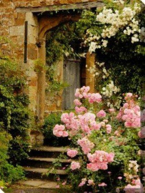 Beautiful Gardens, Beautiful Flowers, Beautiful Places, Rose Fotografie, Jardin Decor, Wisteria Pergola, My Secret Garden, Secret Gardens, Garden Gates