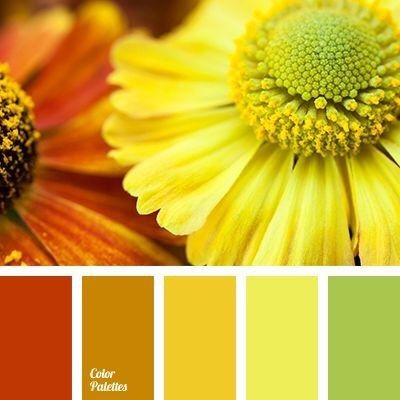 What Color Goes Well With Lime Green Quora Color Palette Yellow Color Palette Blog Color Palette