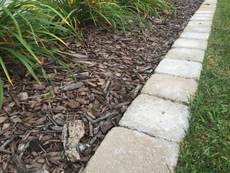 Square paver stones used as edging. Easy to mow!
