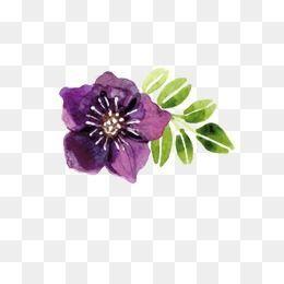 Purple Watercolor Flowers In 2020 Watercolor Flowers Flower