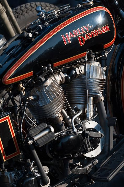 350 Harley Love Ideas Harley Harley Davidson Biker Quotes