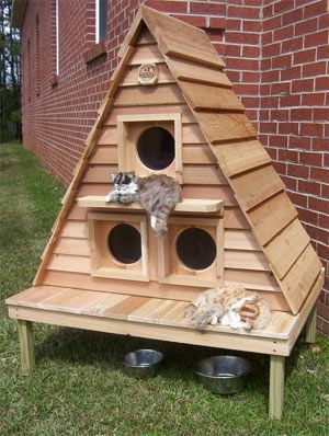 Cat House Plans Instructions For Kitty Home Construction Projects Outdoor Cat House Cat House Plans Cat House Diy