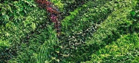 Wall Green Texture Vertical Gardens 60 New Ideas With All The Environmentally Environmentally Gardens Green Ideas T Vertical Garden Plant Wall Plants