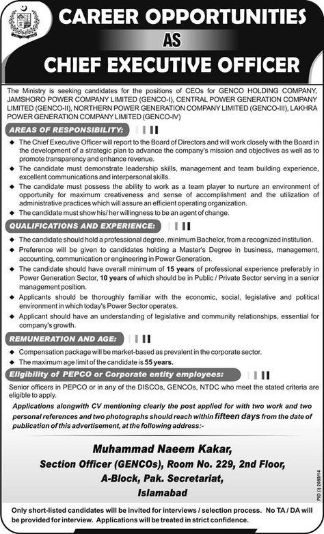 Jobs In Haleeb Foods Limited Pakistan 2014 Job Adds Pinterest - chief executive officer job description