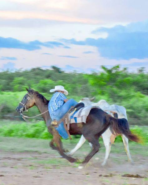 Mis Fotos Nelsonchikito Tlf 04122458821 Acarigua Edo