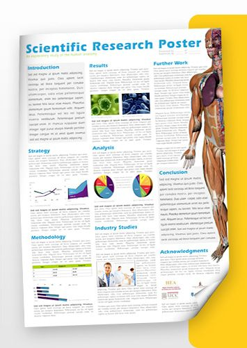 Clean Layout  Research Posters    Scientific Poster