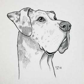 Black And White Ink Animal Drawings In 2020 Animal Drawings Dog