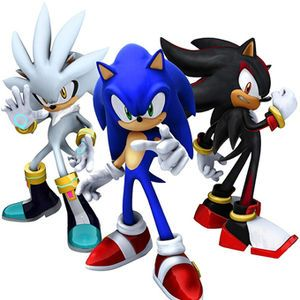 Erinaceomorph Physiology In 2020 Sonic The Hedgehog Sonic And Shadow Sonic