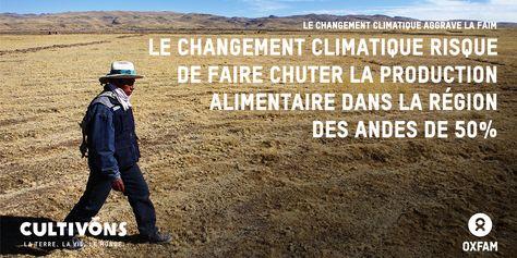 Le changement climatique aggrave la faim dans le monde. Dans la région des Andes, il risque de faire chuter la production alimentaire de moitié. www.oxfam.org/fr/cultivons