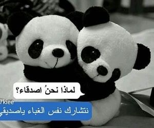 1000 Images About Arabic On We Heart It See More About ﻋﺮﺑﻲ ﺭﻣﺰﻳﺎﺕ And Arabic Friends In Love Funny Picture Quotes Funny Picture Jokes