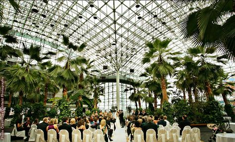 ead8af36ff4a9ef7cea944e39c01d1e0  chicago wedding venues unique wedding venues illinois - The Crystal Gardens At Navy Pier Wedding