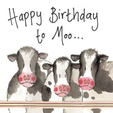 Cows Birthday Card Alex Clark Art Cow Birthday Happy Birthday Cow Birthday Cards