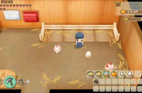 How To Level Up And Upgrade Your Tools In Story Of Seasons Friends Of Mineral Town Gamepur In 2020 Buy Chickens Chickens Seasons