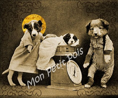 Harry Whittier Frees (1879-1953) - Altered wall art sepia picture of Puppys first weighing
