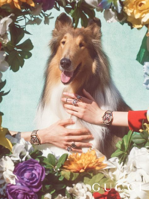 572ff5be7b8 G-Timeless watches and on silver rings, part of the Gucci capsule collection  to celebrate Chinese New Year. The designs are inspired by Unskilled  Worker's ...