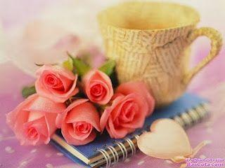 صور جميلة 2020 Hd خلفيات جميله جدا للفيس بوك يلا صور Flower Wallpaper Rose Wallpaper Love Flowers