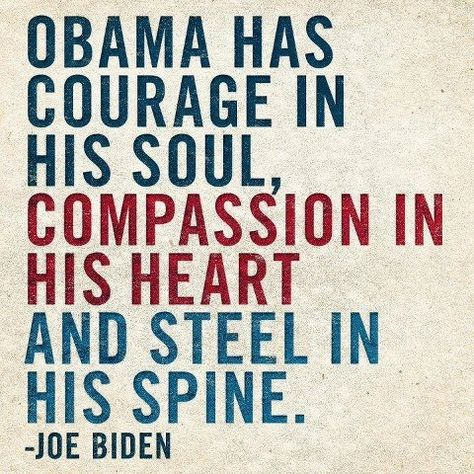 I like Biden and wonder why not him after Obama. It's a pity :-(