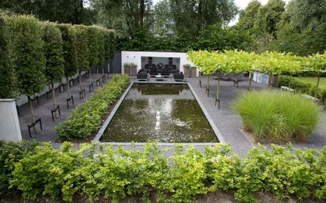 1270 best FONTAINERIE Du0027ART bassin biologique images on Pinterest - pool im reihenhausgarten
